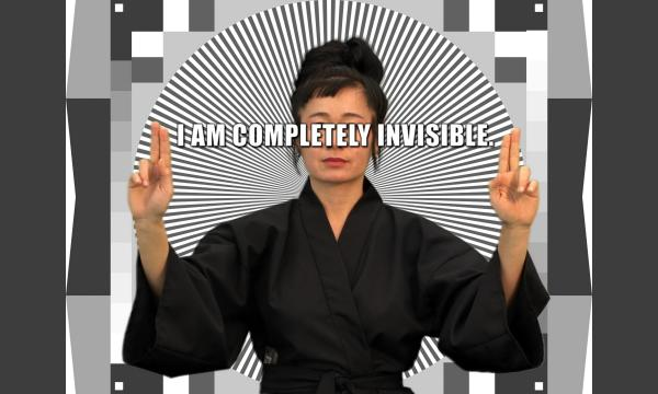 An Installation of Hito Steyerl's How Not to be Seen: A F**king Didactic Educational .MOV File