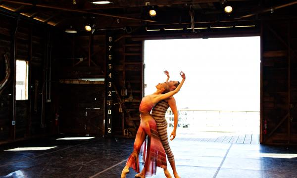 Performance by Julia Adam Dance