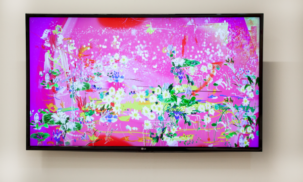 Petra Cortright: ZERO-DAY DARLING